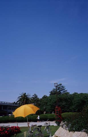 20050528